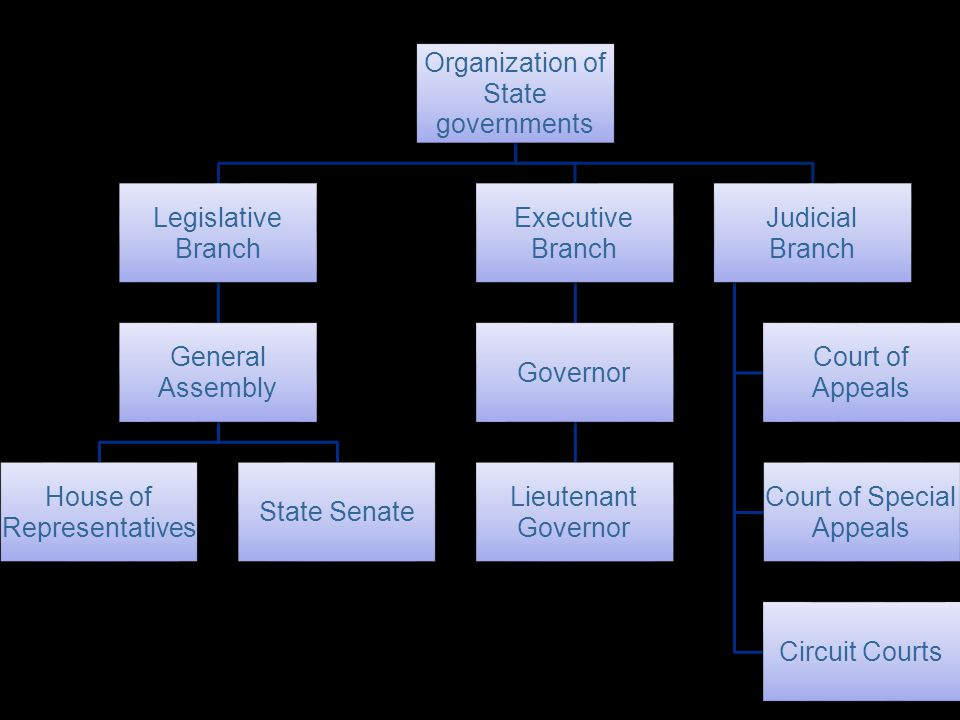 Organization of governments. State. Branch. Legislative. Assembly. General. Representatives. House of.