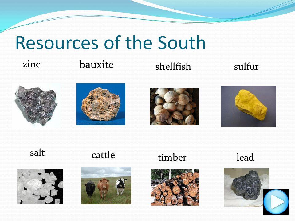 Resources of the South bauxite zinc shellfish sulfur salt cattle