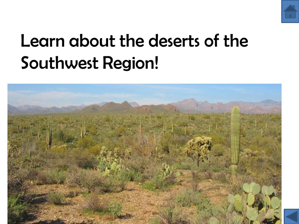 Learn about the deserts of the Southwest Region!