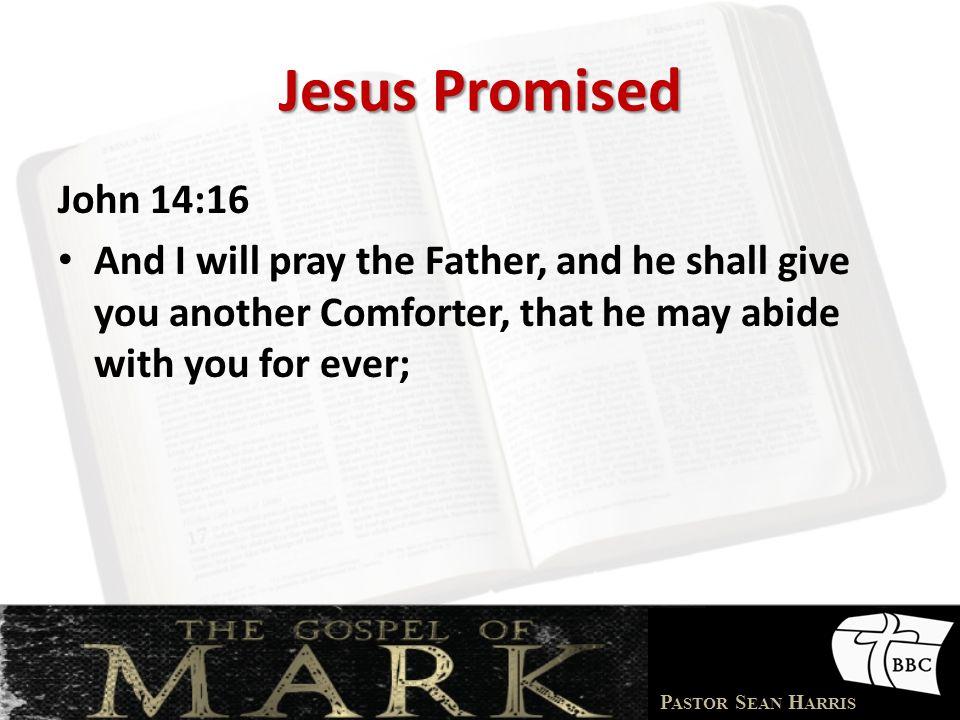 Jesus Promised John 14:16.