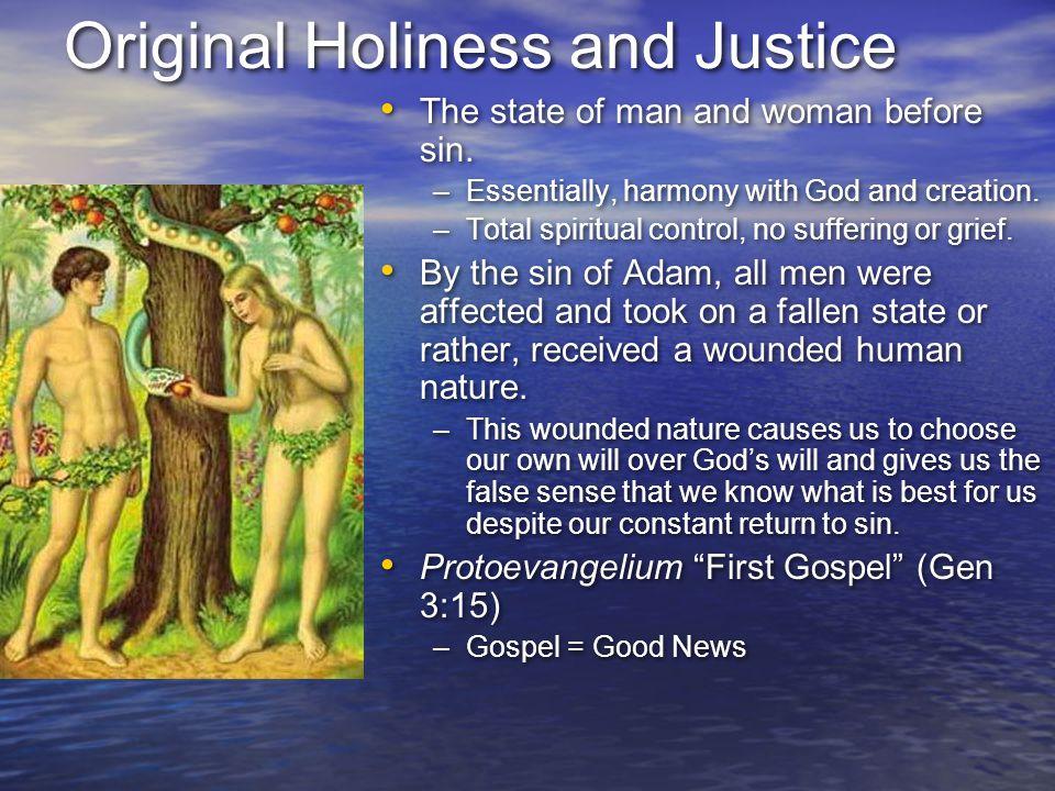 Original Holiness and Justice