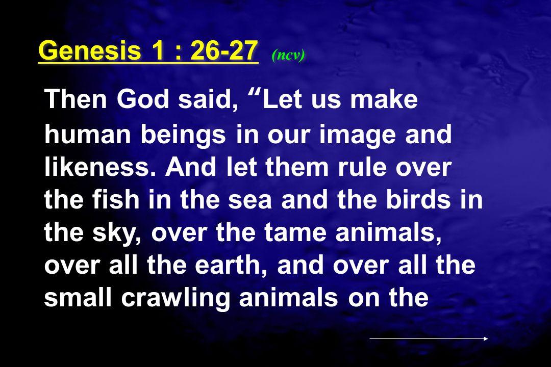 Genesis 1 : 26-27 (ncv)