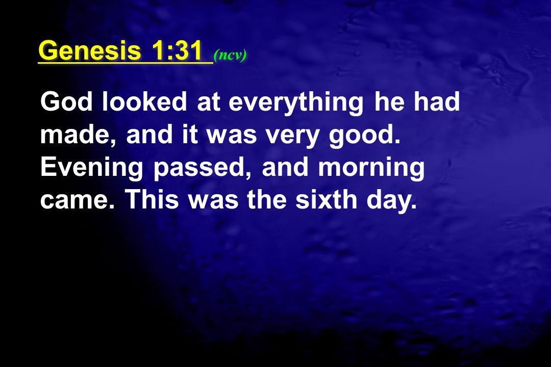 Genesis 1:31 (ncv) God looked at everything he had made, and it was very good.