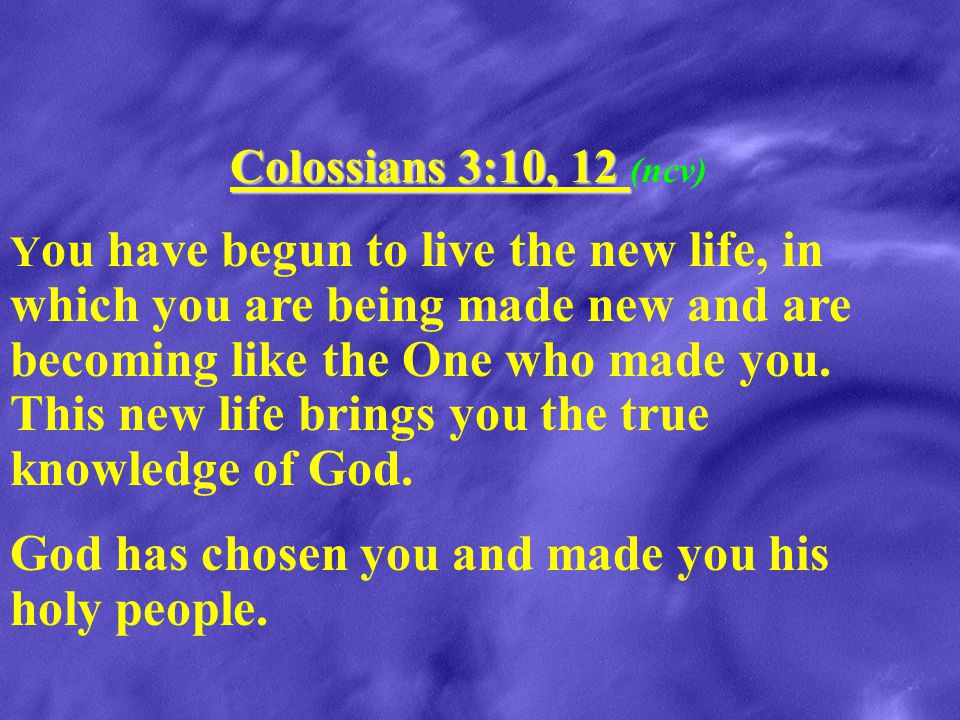 God has chosen you and made you his holy people.