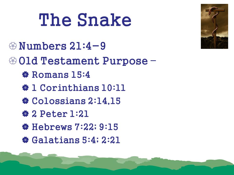The Snake Numbers 21:4-9 Old Testament Purpose – Romans 15:4