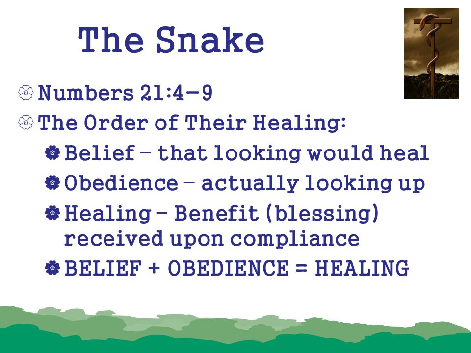 The Snake Numbers 21:4-9 The Order of Their Healing: