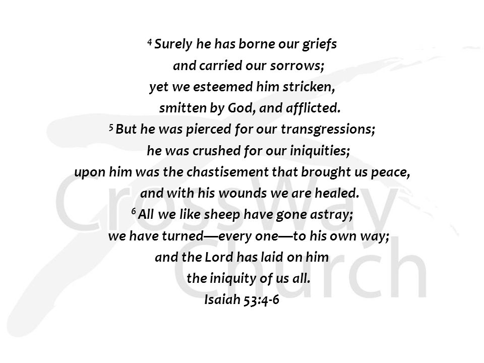 4 Surely he has borne our griefs and carried our sorrows;