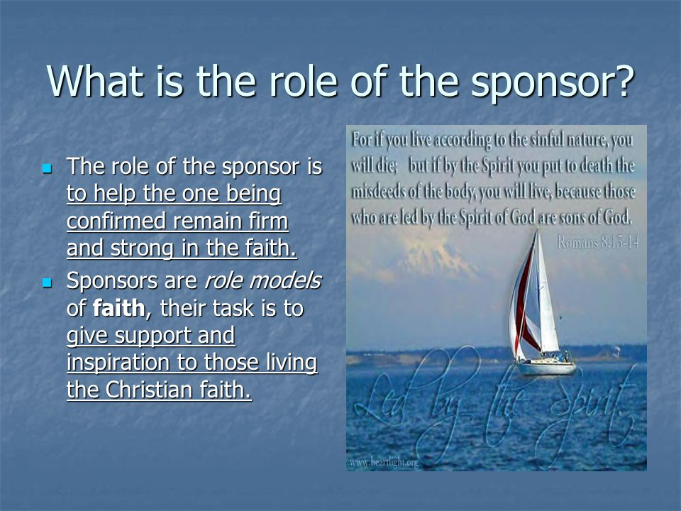 What is the role of the sponsor