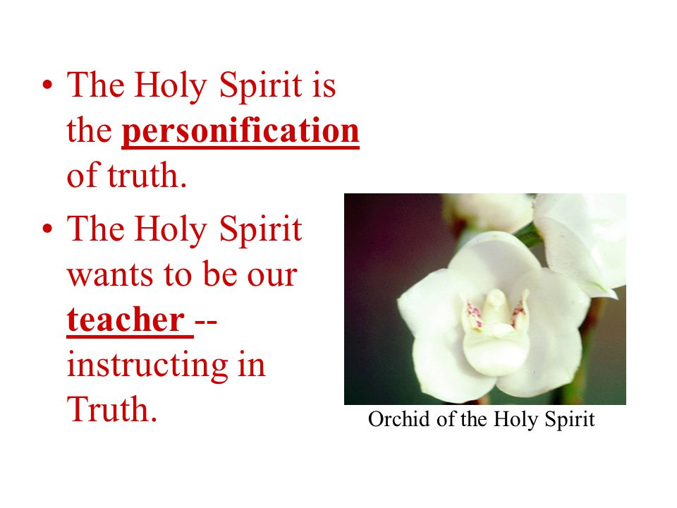 The Holy Spirit is the personification of truth.
