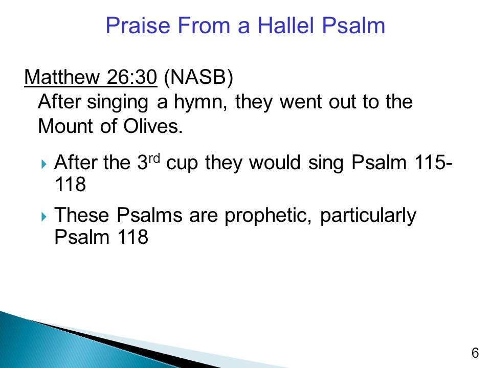 Praise From a Hallel Psalm