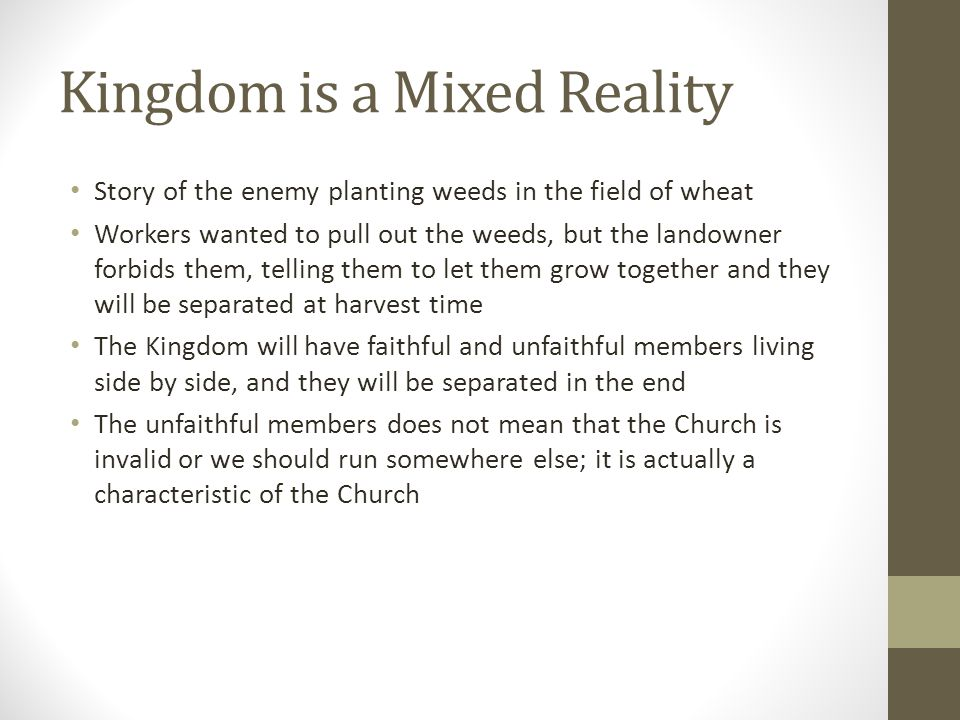 Kingdom is a Mixed Reality