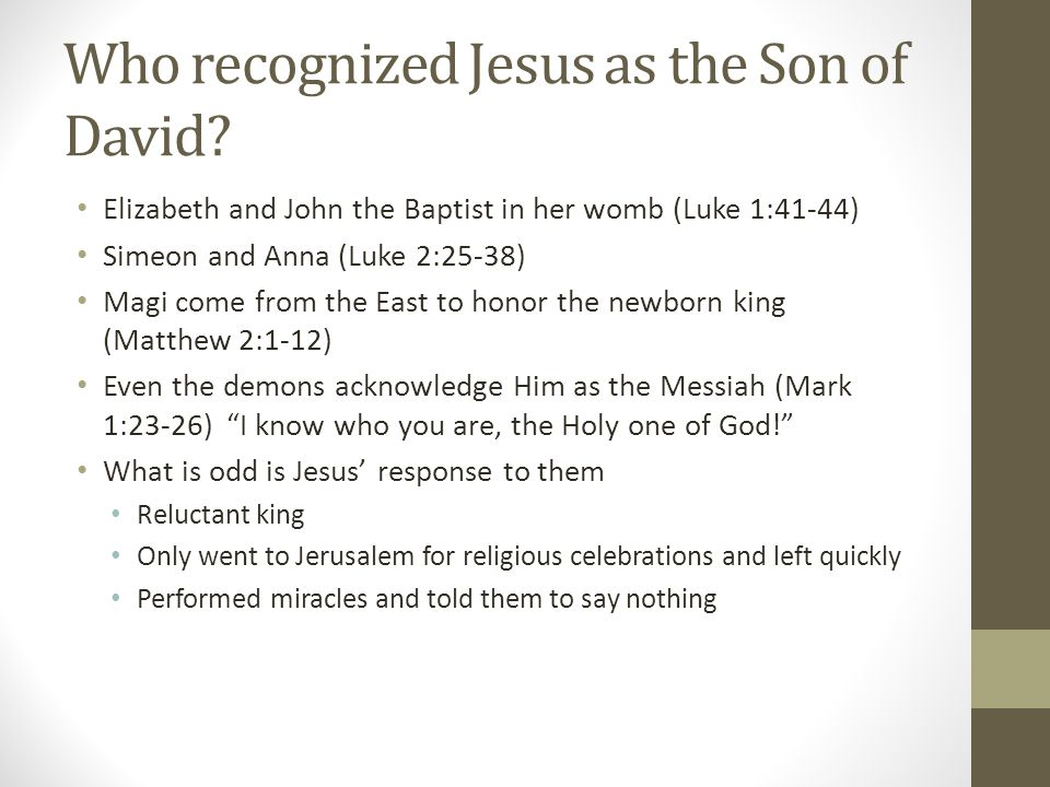 Who recognized Jesus as the Son of David