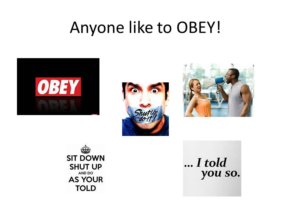Anyone like to OBEY!