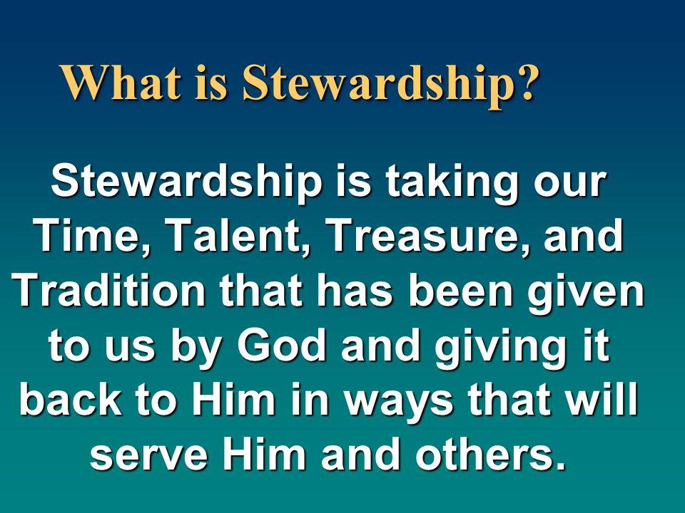 What is Stewardship