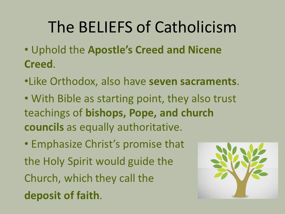 The BELIEFS of Catholicism