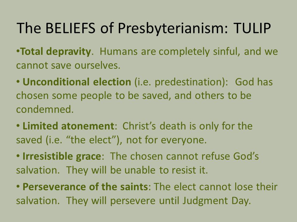 The BELIEFS of Presbyterianism: TULIP