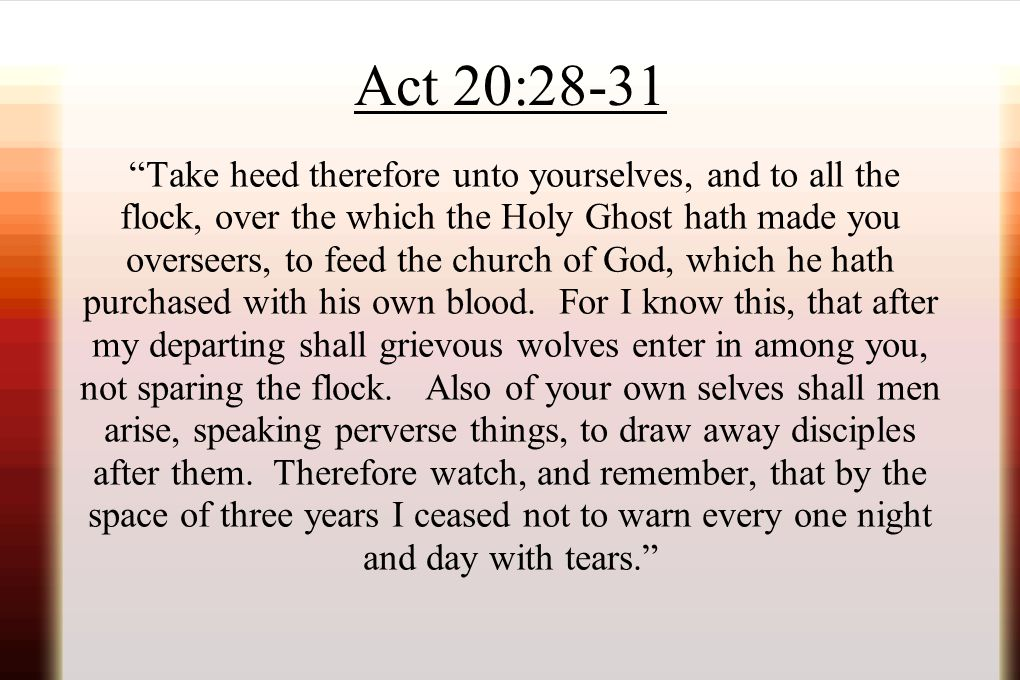 Act 20:28-31