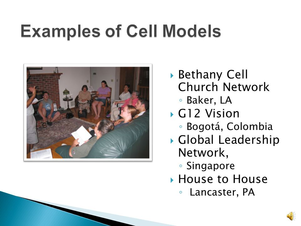Examples of Cell Models