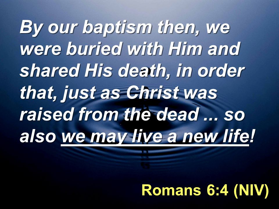 By our baptism then, we were buried with Him and shared His death, in order that, just as Christ was raised from the dead ... so also we may live a new life!