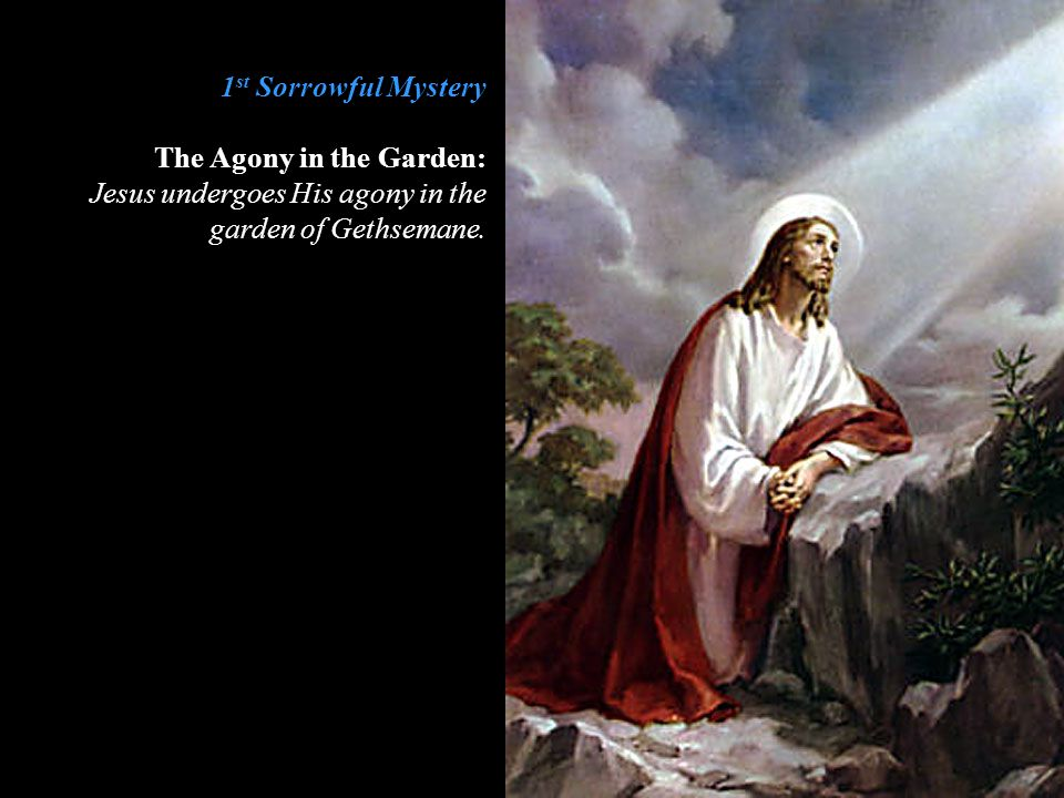 1st Sorrowful Mystery The Agony in the Garden: Jesus undergoes His agony in the garden of Gethsemane.