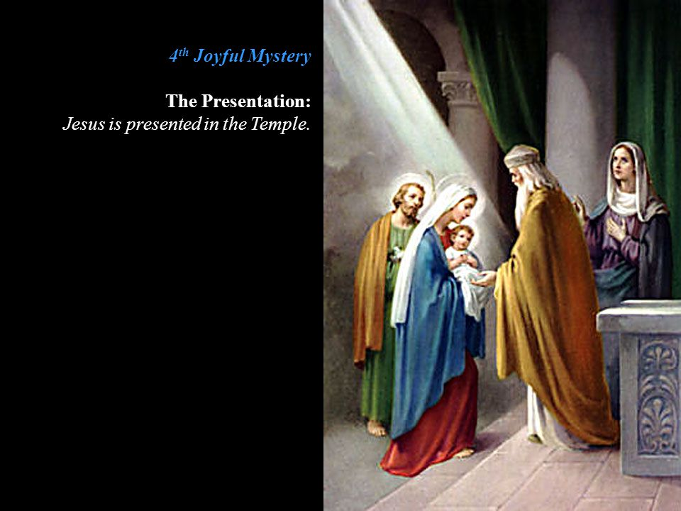 4th Joyful Mystery The Presentation: Jesus is presented in the Temple.