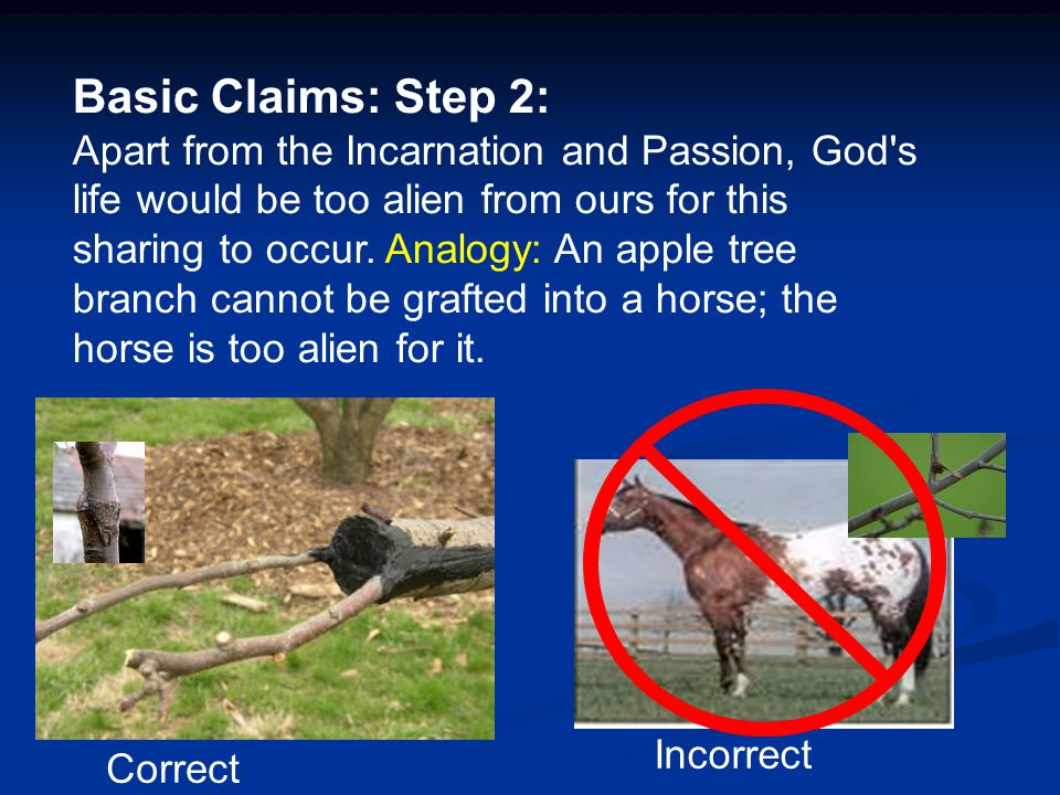 Basic Claims: Step 2: Apart from the Incarnation and Passion, God s life would be too alien from ours for this sharing to occur. Analogy: An apple tree branch cannot be grafted into a horse; the horse is too alien for it.