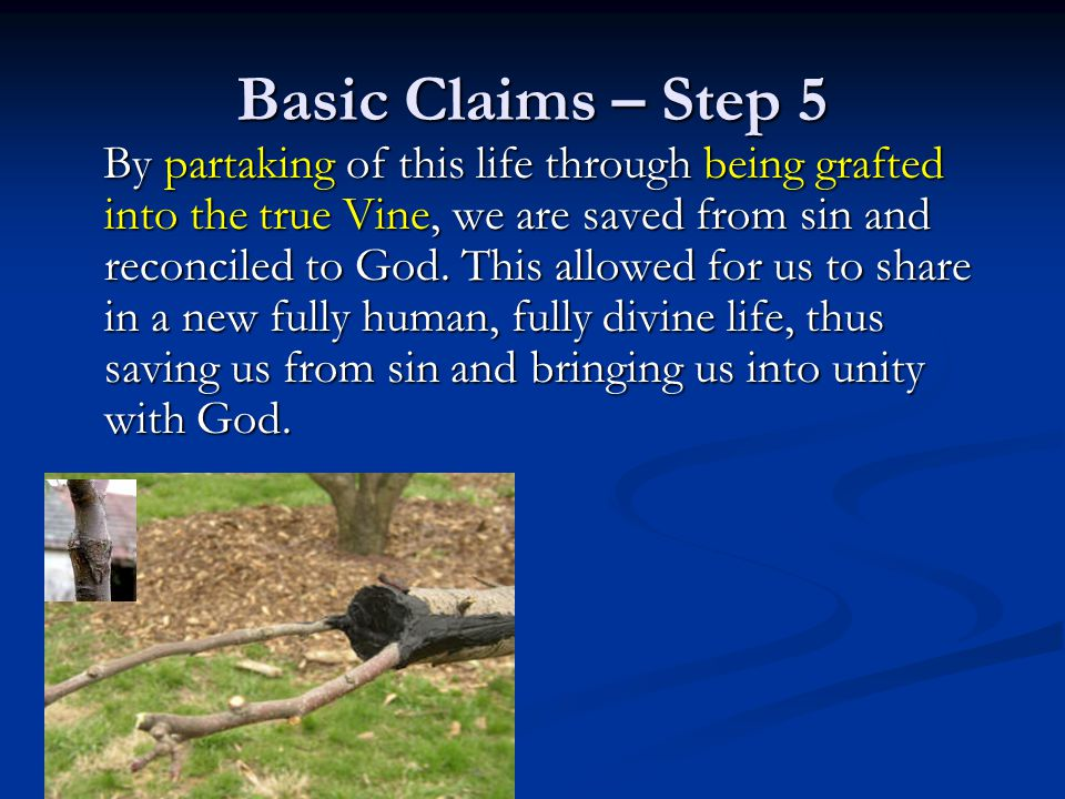 Basic Claims – Step 5