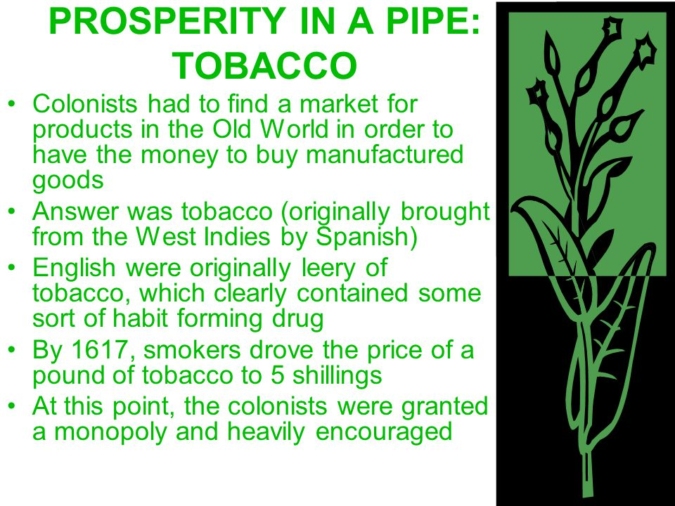 PROSPERITY IN A PIPE: TOBACCO