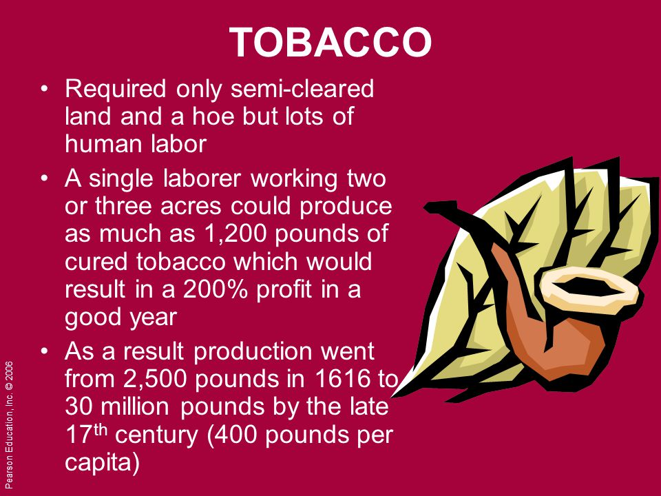 TOBACCO Required only semi-cleared land and a hoe but lots of human labor.
