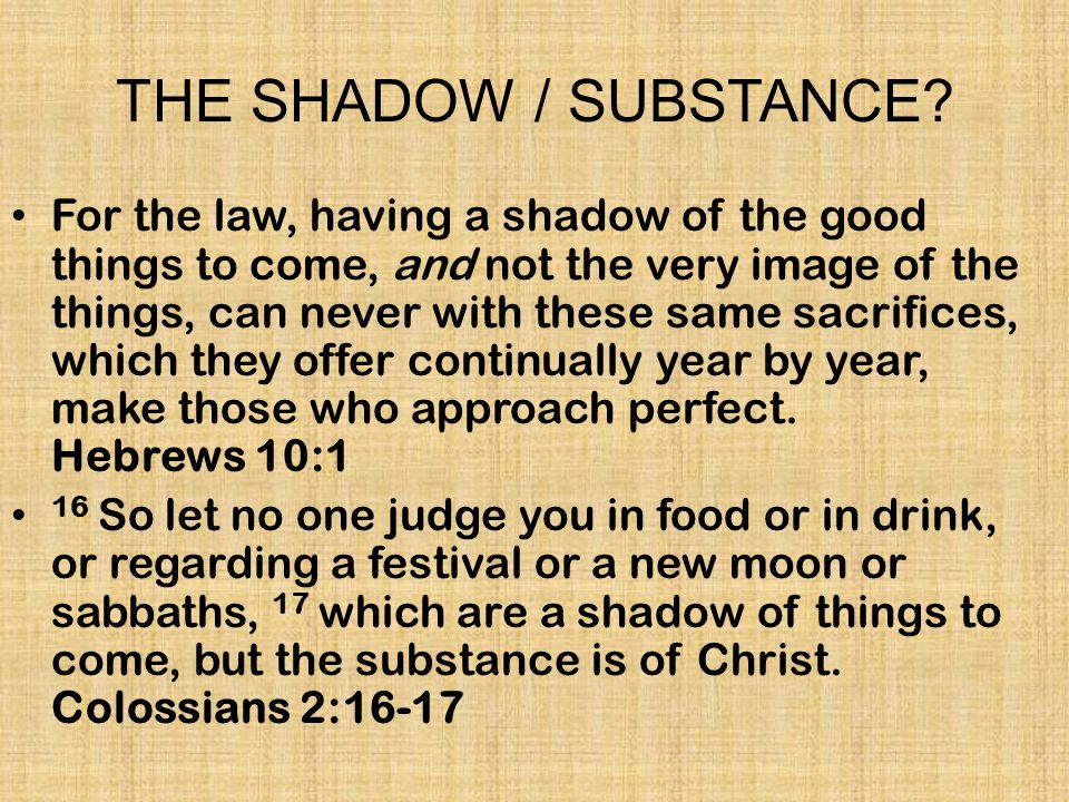THE SHADOW / SUBSTANCE