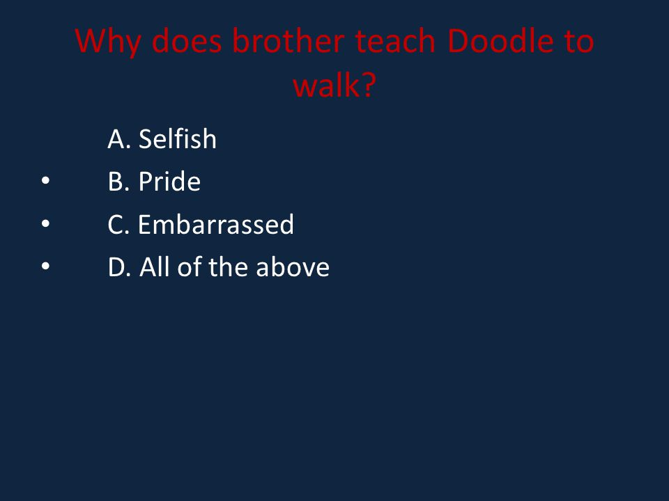 Why does brother teach Doodle to walk