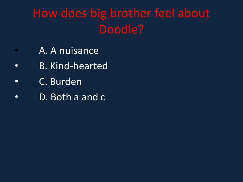 How does big brother feel about Doodle