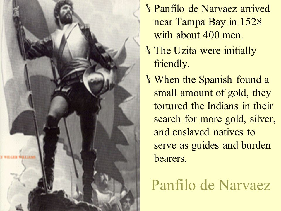 Panfilo de Narvaez arrived near Tampa Bay in 1528 with about 400 men.