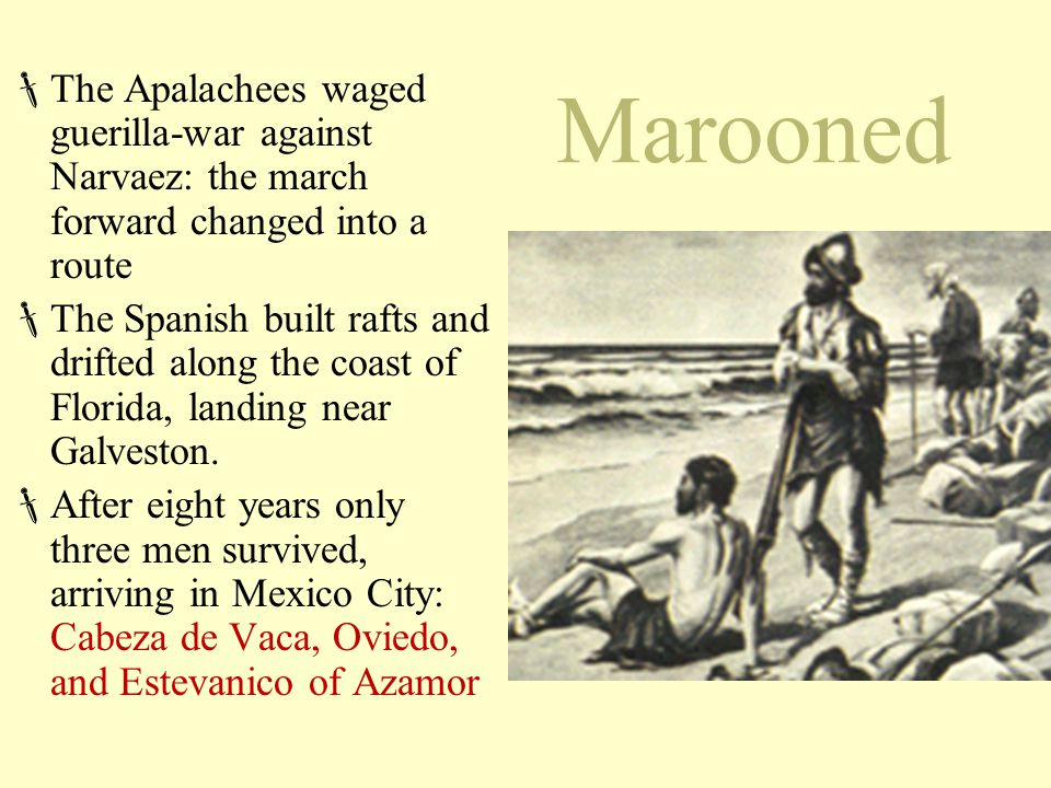 The Apalachees waged guerilla-war against Narvaez: the march forward changed into a route