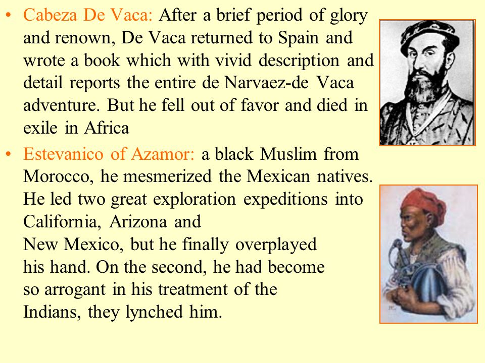 Cabeza De Vaca: After a brief period of glory and renown, De Vaca returned to Spain and wrote a book which with vivid description and detail reports the entire de Narvaez-de Vaca adventure. But he fell out of favor and died in exile in Africa