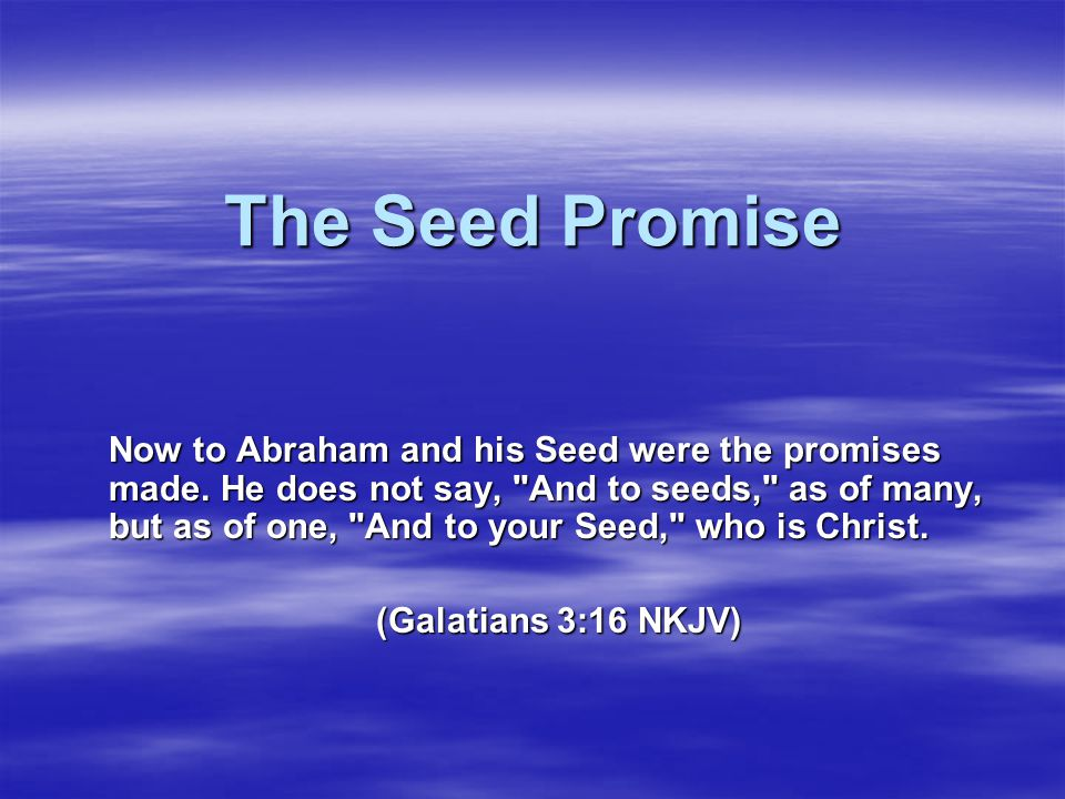 The Seed Promise