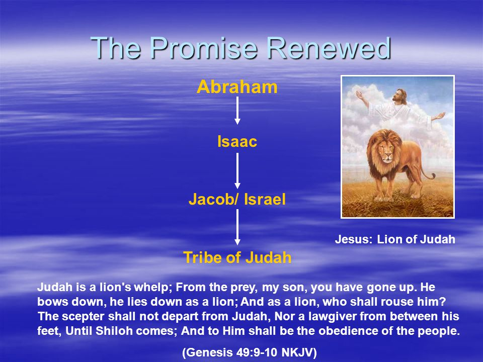 The Promise Renewed Abraham Isaac Jacob/ Israel Tribe of Judah