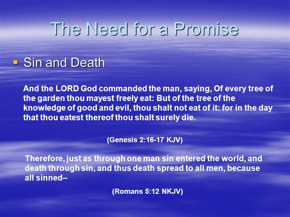 The Need for a Promise Sin and Death