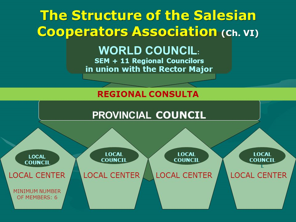 The Structure of the Salesian Cooperators Association (Ch. VI)
