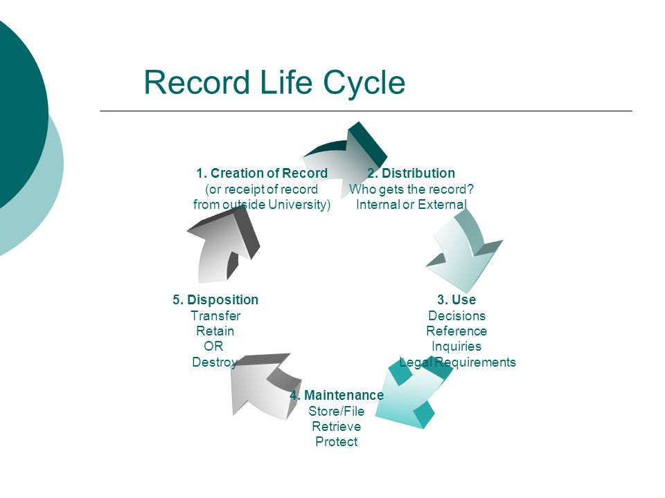 Record Life Cycle