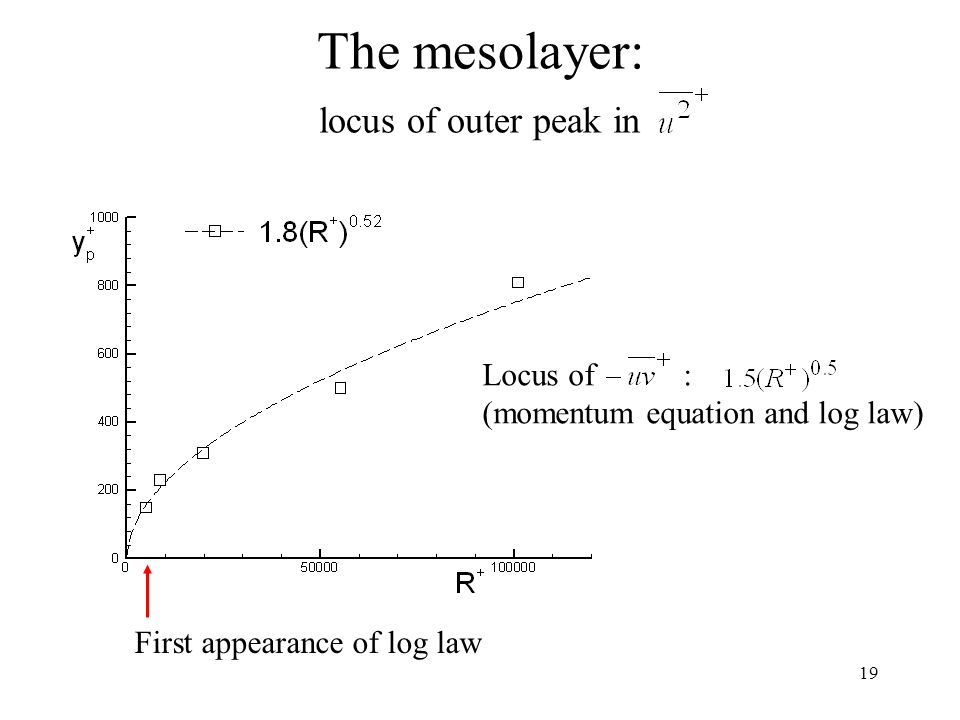 The mesolayer: locus of outer peak in