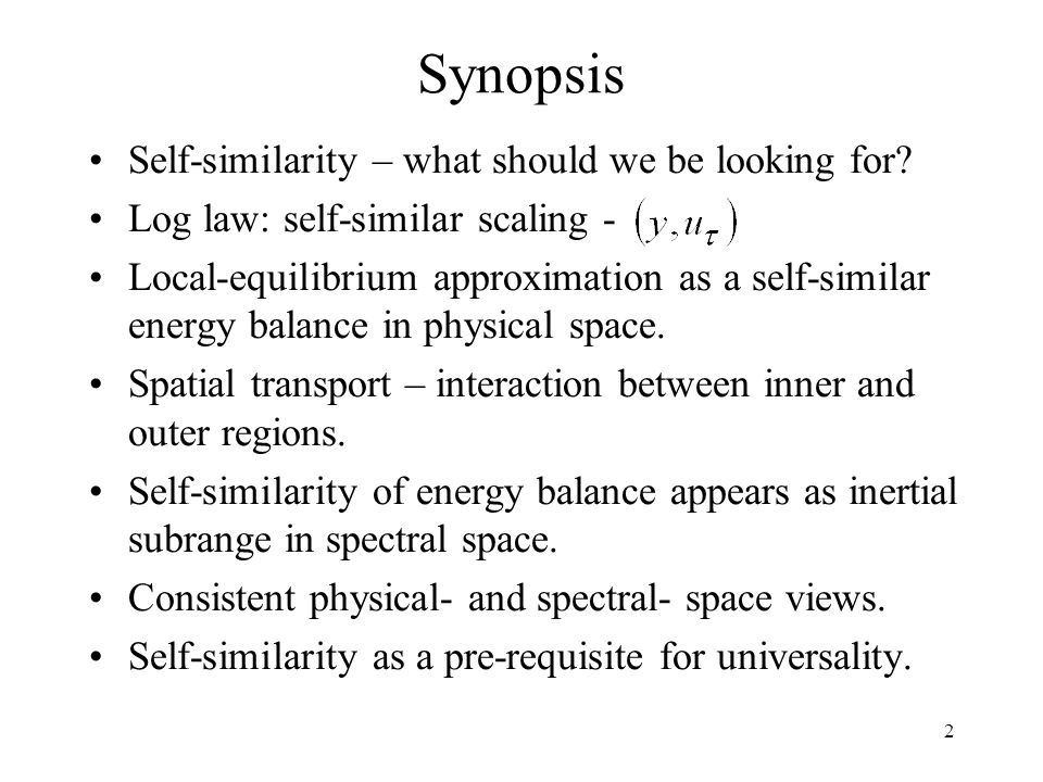 Synopsis Self-similarity – what should we be looking for