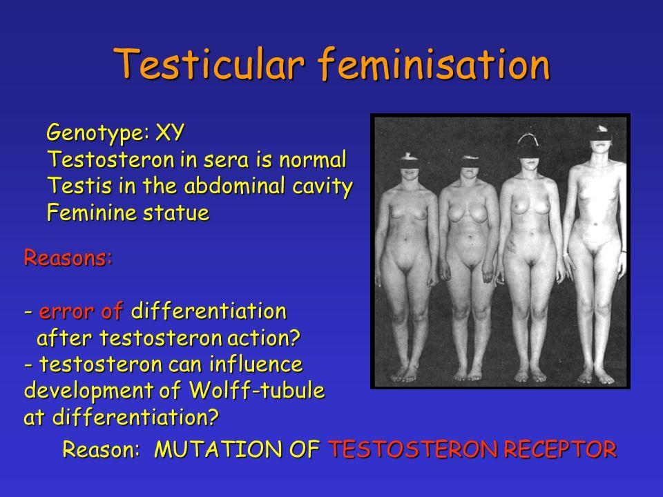 Testicular feminisation