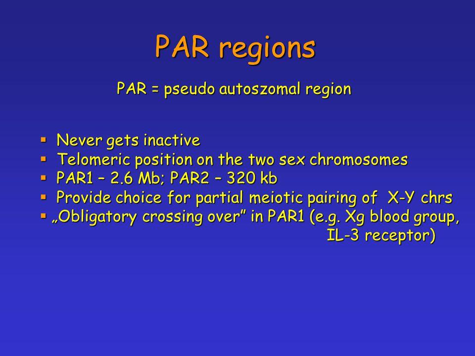 PAR regions PAR = pseudo autoszomal region Never gets inactive