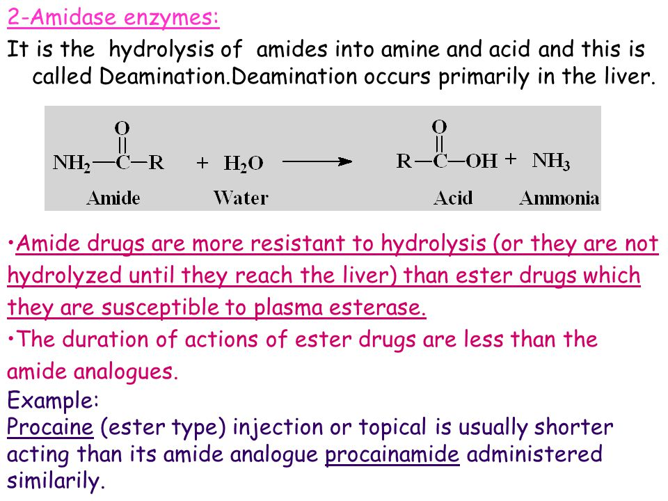 2-Amidase enzymes: It is the hydrolysis of amides into amine and acid and this is called Deamination.Deamination occurs primarily in the liver.