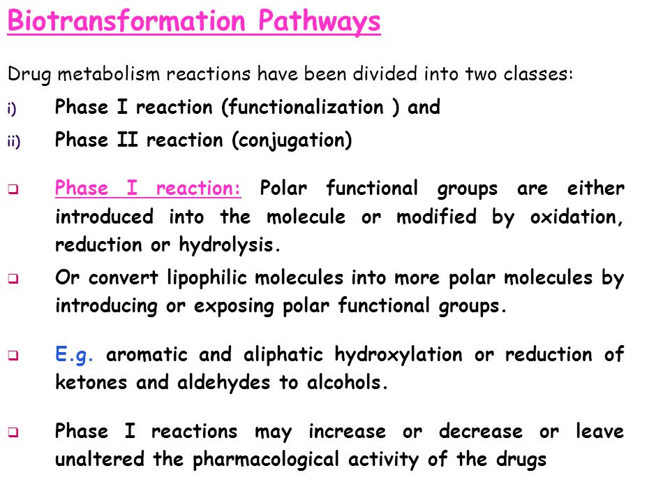 Biotransformation Pathways