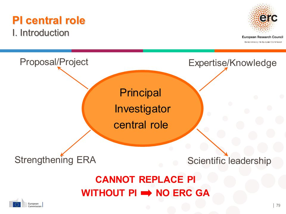 PI central role I. Introduction