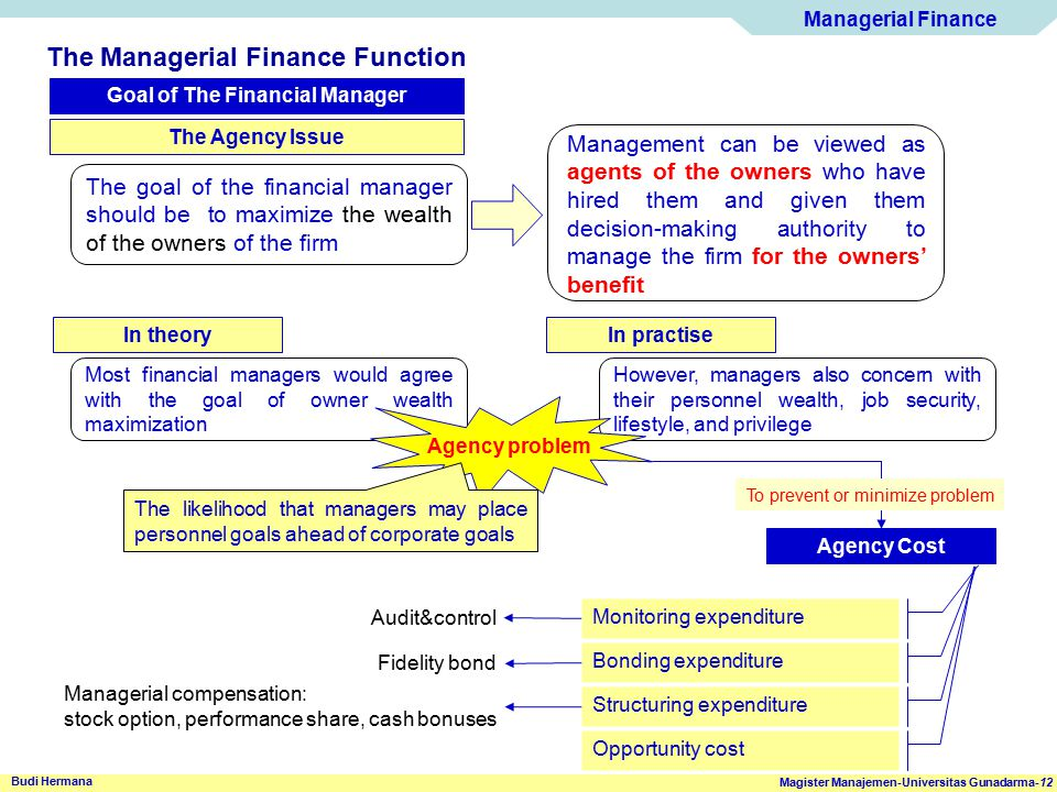 Goal of The Financial Manager