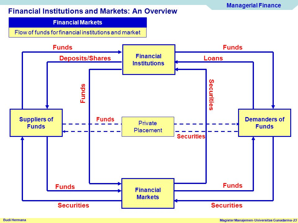 Flow of funds for financial institutions and market