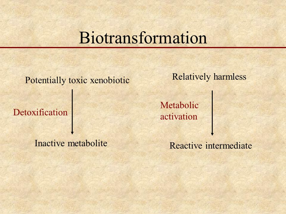 Biotransformation Relatively harmless Potentially toxic xenobiotic